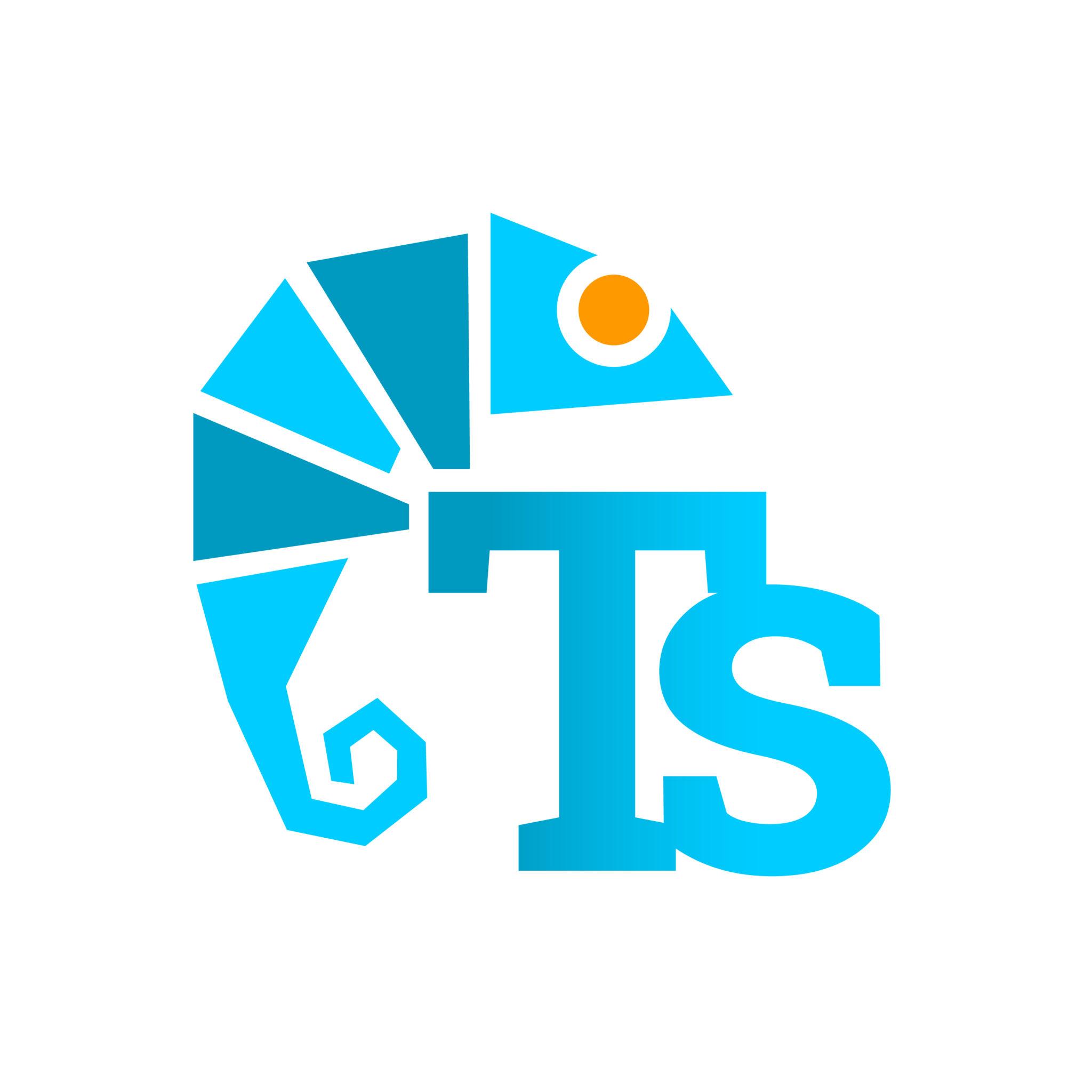 logo-tweakstyle1-arnaudneubert