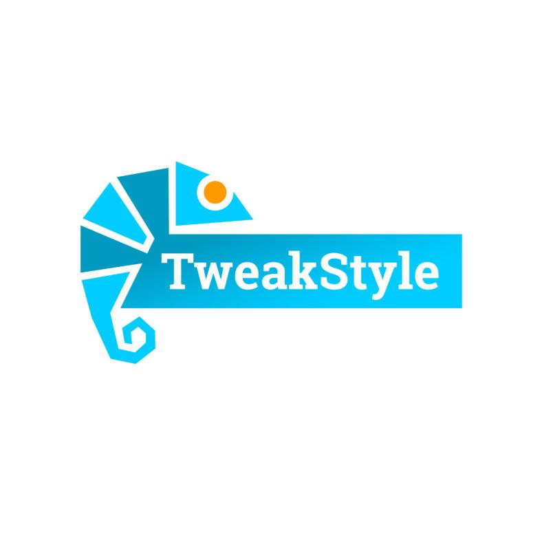 logo-tweakstyle2-arnaudneubert